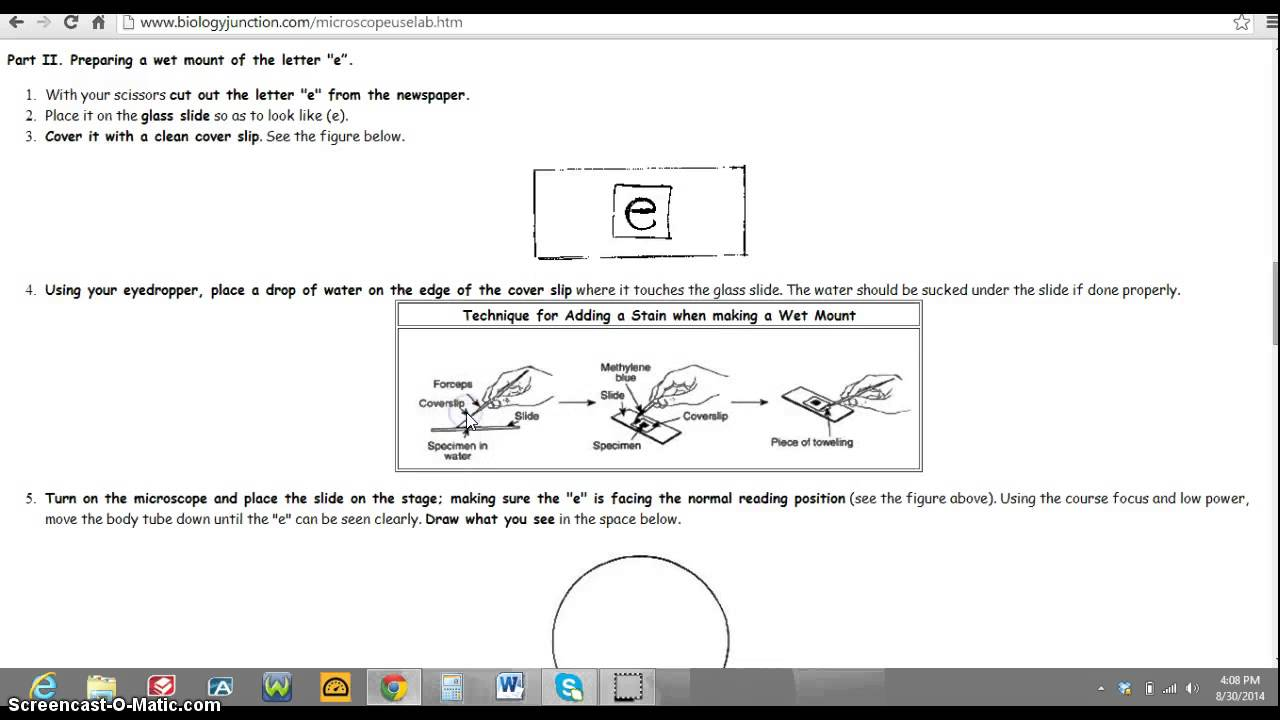 Introduction To A Lab Report  Buy Cheap Essays Online On Writing  Introduction To A Lab Report
