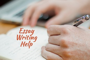 Online Help With Essay Writing  Buy Cheap Essays Online On Writing  Im Glad That The With The Most Important Job And